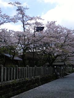 阿蘇神社へ